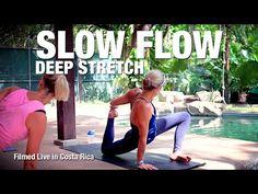 Slow Flow Deep Stretch Yoga Class (live) - Five Parks Yoga - YouTube
