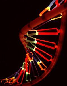 Beautiful DNA!