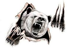 Image result for Angry bear images