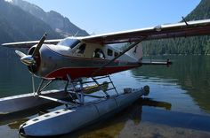 Island Wings Floatplane Flightseeing Misty Fjords, Alaska