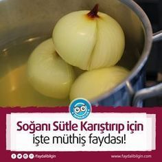 You can mix the onion with milk and then cut it off! Honeydew, Natural Medicine, Natural Remedies, Onion, Health Tips, Herbalism, Healthy Lifestyle, Food And Drink, Health Fitness