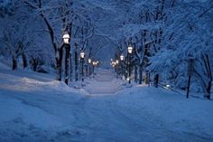Snowy Lane, Bethlehem, Pennsylvania photo via kathy