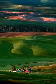 Palouse Hills,  // by Doug Solis University of Idaho and Washington State University are located in the Palouse region