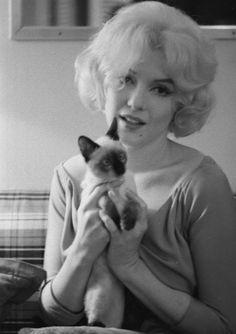 Marilyn Monroe and kitten