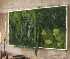 Fancy - Fern and Moss Wall Art