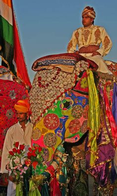 Elephant Fest india - Google Search