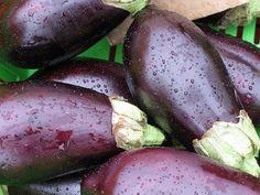 Les propriétés de l'aubergine pour perdre de la graisse abdominale - Améliore ta Santé