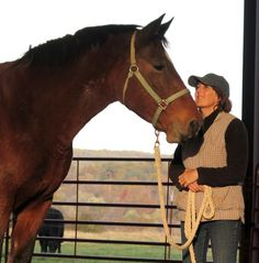 Horse clicker training - Standing at attention during grown ups are talking