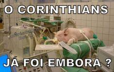 Os melhores memes da vitória do Corinthians diante do Palmeiras Corinthians Time, Change Language, Flat Mules, Flexibility, Football Jokes, Motorbikes, Back Walkover