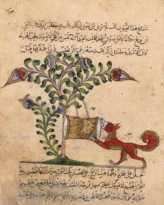 Fable : le renard et le tambour    Kalila wa Dimna (traduction par Abd Allah ibn al-Muqaffa')  Egypte ou Syrie, XIIIe siècle  Paris, BNF, département des Manuscrits, Arabe 3465, fol. 51