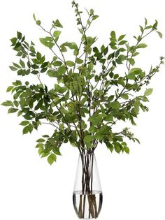 Spring Branches in Tall Vase (faux) || Diane James Home