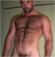 Hairy chest men sex