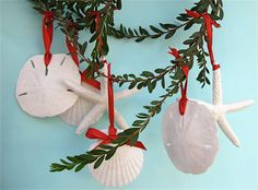 6 Beach Ornaments Natural or with Glitter  3 by SeashellCollection, $27.00  I can do this myself and have , especially like Red Ribbon and other colors work well also.
