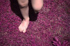 🍀 Barefoot toddler child running on pink and purple flower field 💜 .⠀⠀ Available via Shutterstock ⠀⠀ .⠀⠀⠀ 📷 Copyright © 2018 Rkakoka⠀ .⠀⠀⠀ .⠀⠀⠀ .⠀⠀⠀ #thecolorpurple #surrealism #surreal #barefoot #outdoorphotography #barefeet #childhood #imagination #dreamy #dreamyphoto #surrealphotography #conceptphotography #shutterstock #shutterstockportfolio #shutterstockcontributor #negativespace #playfullness #copyspace #pinkismyfavoritecolor #dreamers #children #creativity