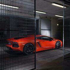 Lamborghini Aventador - Caged Beast