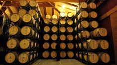Fuga de bodegas en la Denominación de Origen Rioja - Empresas