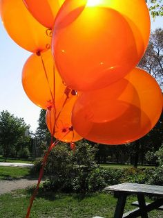 Color Palette: Tangerine to Orange balloons