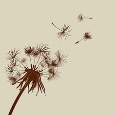 dandelion tattoos | Lady dandelion tattoos images