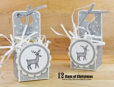 My Chic-n-Scratch 12 days of Christmas - Day 4 - Reindeer Food gift box - video tutorial Christmas Favors, 3d Christmas, Stampin Up Christmas, Christmas Makes, 12 Days Of Christmas, White Christmas, Christmas Ideas, Christmas Craft Projects, Christmas Paper Crafts
