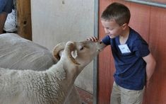 Having the support of the adults in their life will build confidence, and help them become more compassionate individuals. Here are a few easy (and fun) ways to help children get involved in helping animals and making our world a better place.