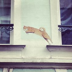 Street Art cats