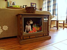 Dog bed made out of old television set. She got it for $4.00 at her local Habitat ReStore. Perfect!