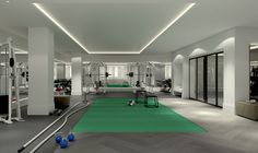 101 Wall-Piet Boon:Training studio by Piet Boon with Kevin Dineen