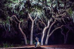 Chantelle and Andrew's Harmony Golf Preserve Wedding PhotographyOrlando Wedding Photographers | Lotus Eyes Photography