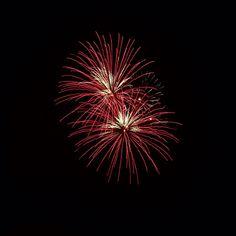Fireworks- Ashleigh Hunter