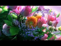 Első Emelet - Boldog névnapot! - YouTube Rock, Retro, Plants, Adhd, Youtube, Skirt, Locks, The Rock, Rock Music