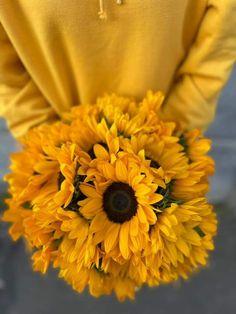 #sunflowers #floareasoarelui Sunflowers, Magnolia, Magnolias, Sunflower Seeds