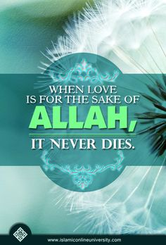Love for the sake of Allah is a journey that leads you to the worthiest of destinations. Do not settle for anything less.