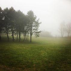 A foggy day in Skurup!  #foggy #skurup