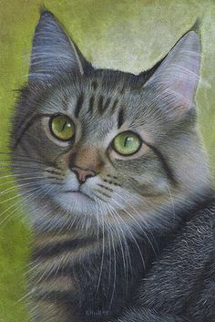 Portrait of a Tabby by Karen Hull ~ amazing work
