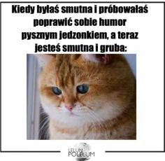 Przykre to ja Funny And Gold, Cute Cats, My Life, Fandoms, Humor, Memes, Quotes, Sisters, Qoutes