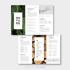 Nature trifold brochure template Free Ve. Brochure Design Layouts, Brochure Cover Design, Graphic Design Brochure, Brochure Design Inspiration, Graphic Design Posters, Leaflet Template, Leaflet Design, Booklet Design, Brochure Template