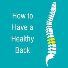 A healthy spine supports the body while letting it move freely. It does this with the help of three natural curves. Strong, flexible muscles help, too. They support the spine by keeping its curves properly aligned. The disks that cushion the bones of your spine also play a role in back fitness.