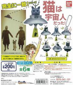 完全一致系列!貓咪其實是外星人!~ | 玩具人Toy People News Doll Toys, Dolls, Toy People, Japanese Toys, Rement, Mini Things, Toy Craft, Designer Toys, Toys For Boys