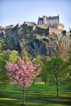 Cherry blossom tree on meadow at hill with ancient castle, edinburgh castle in scotland — tourist attraction, travel photography - stock photo Scotland Castles, Scottish Castles, Beautiful Castles, Beautiful Places, Places To Travel, Places To See, Famous Castles, Edinburgh Castle, Visit Edinburgh