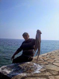 "Aλλος Τρόπος Εκφρασης! Γεώργιος Βελλιανίτης: Ο ΨΑΡΑΣ ""ΓΟΥΛΙΖΕΙ"" ΤΟ ΧΤΑΠΟΔΙ Greece, Seafood, Nature, Oc, Landscapes, Travel, Photos, Greece Country, Sea Food"