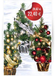 Sparen Sie jetzt 25 % auf ausgewählte #Tannenserien mit und ohne LED.  Starten Sie jetzt #funkelend und #strahlend in die #Weihnachtssaison 2015/ #Wintersaison 2016.  #LED #Weihnachtsdekoration2015 #Schaufensterdekoration #Lichterkette #LEDs #Lichterzweig #WeihnachtsDecor #Christbaumschmuck #PreLit #DekoShop #Weihnachtsbaum #Tannenbaum #Tannenkranz #KunstTanne #Winterdeko #abama #abamadeco #Dekoartikel