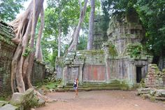 Temples of Angkor, Ta Prohm. Siem Reap, Cambodia. More on my blog: http://www.reislust.com/2015/02/de-tempels-van-angkor-siem-reap.html