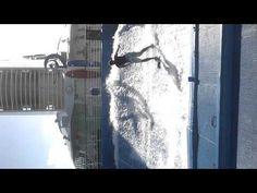 Flow Rider Pool!