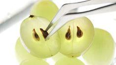 Vaak als we druiven eten spugen we de pitten zonder na te denken uit en staan we er niet bij stil dat af en toe op een druivenpit knabbelen onnoemelijk veel gezondheidsvoordelen heeft. Deze kleine schatten zijn de basis voor vele medicijnen, worden gebruikt in schoonheidsprodukten en ondersteunen zelfs bij het verliezen van gewicht. Is je nieuwsgierigheid gewekt naar de toepassing van de druivenpit, lees snel verder in het artikel hieronder.