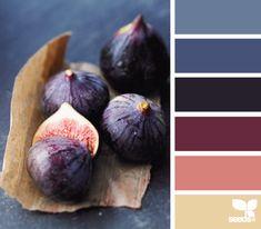 fig hues.