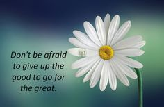 don't be so fragile, make some #risks and get ready to get some #great stuff
