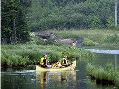 Dollar Lake Provincial Park   novascotia.com