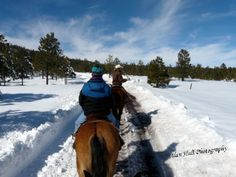 Winter Horseback Riding Vacation, Hidden Meadow Ranch, AZ. in the White Mountains of Arizona, lies luxury horseback riding.  About a 4-hour-drive from Phoenix, the ranch's elevation of 8500 ft. practically guarantees a wintry scene, or cool relief during sweltering Arizona summers. The 150- acre property is surrounded by a 5,700-acre wildlife habitat that restricts motorized vehicles. The adjacent Apache-Sitgreaves National Forest (two million acres) provides access to 975 miles of trails.