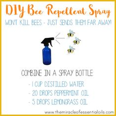 Want to get rid of bees without cruelly killing them off? Try this essential oil bee repellent! It just contains distilled water and two essential oils that have been shown to deter bees! In my kitchen, I always have fat bumble bees flying in through the windows and buzzing around over the sink and food … … Continue reading →