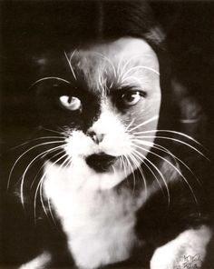 Wanda Wulz, Moi + chat, 1932 photomontage, 29,3 x 23,2 cm, collection privée.